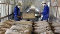 cement consumption increases by 124 during jan june