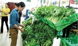 efforts to put organic food into life
