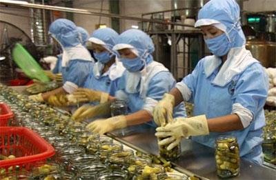 Viet Nam GDP to gain most from TPP, AEC