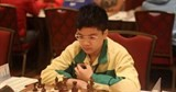 vietnamese master wins gold in intl chess competition