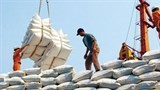 rice exports hit us 14 billion