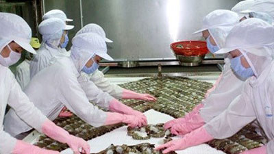 Shrimp farmers should increase product quality: experts