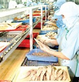 evfta puts vietnam in new position