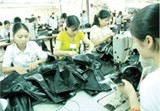 evfta to greatly benefit vietnamese footwear