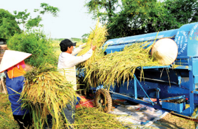Suitable policy needed to accelerate agriculture