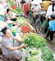 quang ngai develops rural markets