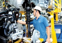 support industries focus on key sectors