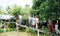 phong dien focuses on ecotourism development