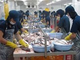 tra fish sector needs strong brand name