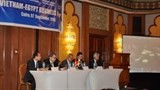 vietnam egypt business forum opens
