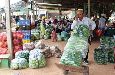 Forum looks to boost farmers' efficiency