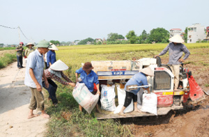 Allying Vietnam-Japan agricultural businesses