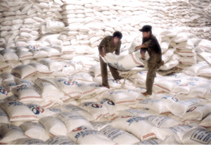 High quality rice exports soar