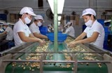 vietnam aims to set up export channel to italy
