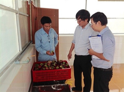 Safety standards maximise profits for fruit farmers