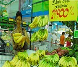 vn to overtake philippines banana trade