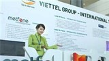vietnam promotes overseas investment