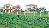vietnam strives for half of all communes to meet new style rural criteria by 2020
