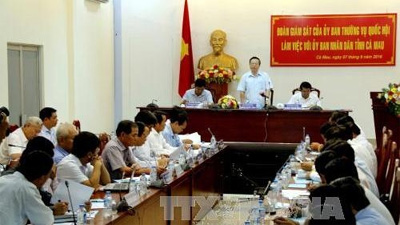 Ca Mau urged to step up construction of new-style rural areas