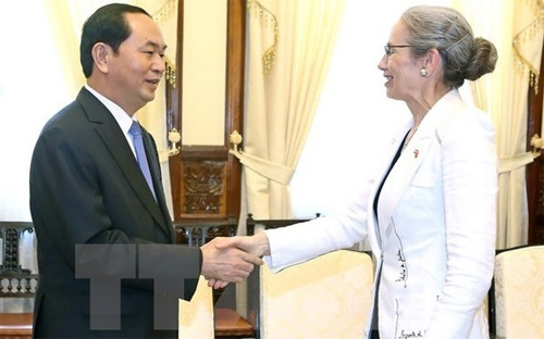 Vietnam wants to boost ties with Netherlands: President