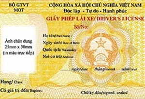 Viet Nam recognizes international licences in October