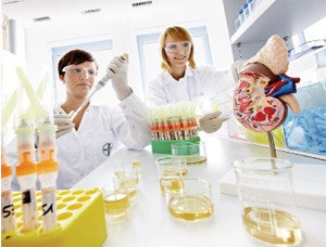 bayer as a pure life science company