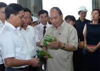 pm phuc tours vineco high tech agriculture project in hai phong
