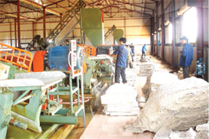Hau Giang's industry promotion in progress