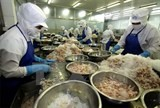 bac lieu sees record high seafood exports