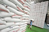thailands rice exports to reach 10 million tonnes next year