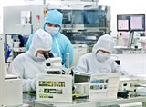 vinh phuc electronics production surges 88