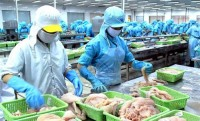 seafood exports fetch us 57 billion in ten months