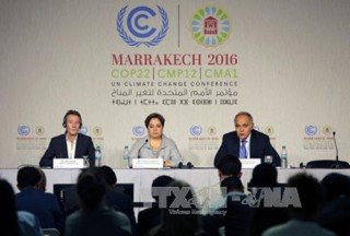 world leaders discuss ways to combat climate change