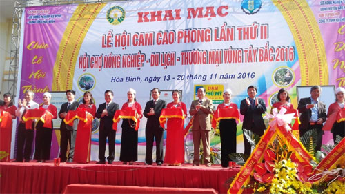 Cao Phong orange festival kicks off