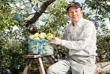 japanese apples re enter vietnamese market