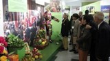 mother goddess religion spotlighted at nam dinh exhibition